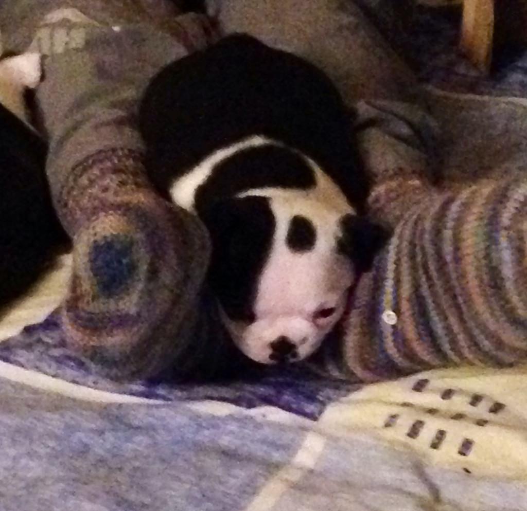 Ich und die Füße meiner Mama, gut zum schlafen und anknabbern.